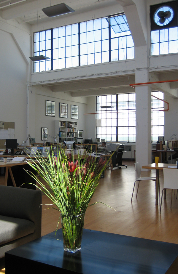 architectural design studio address. Madro o shares a light filled studio in San Francisco with award winning  Kennerly Architecture Planning modern architectural design firm Design Studio Native Plants through Modern Lens at