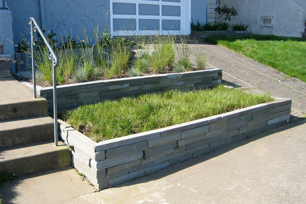 Native grasses find a home in a pair of stone planter boxes in this San Francisco front yard.