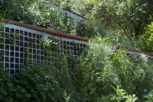 A closer view of lush foliage growing out through the perforated steel..
