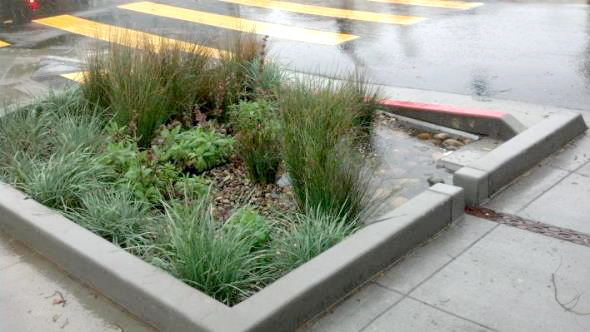 Bioretention planter on Cesar Chavez in San Francisco