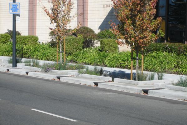 sidewalk infiltration planters, medium