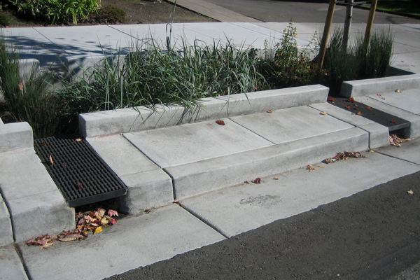 Stormwater infiltration sidewalk planters native plants for Rain gutter planter box