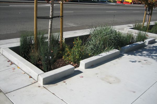 Sidewalk side of the stormwater infiltration planter