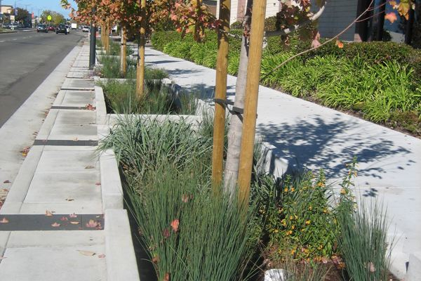 long perspective of the stormwater-capturing system