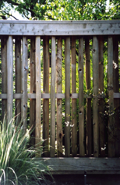 split-rail grapestake fence